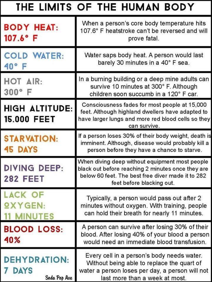 Human Body Limits